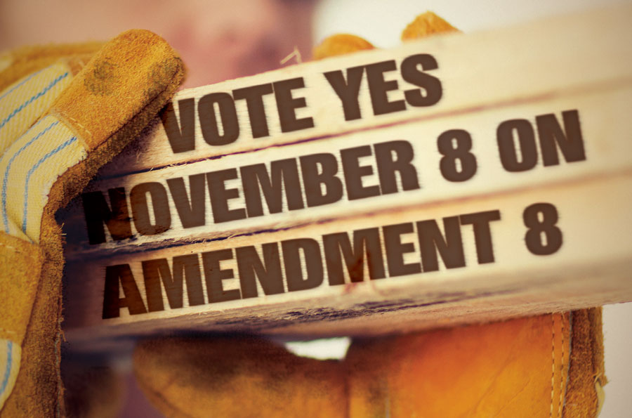 nov8amendments2016